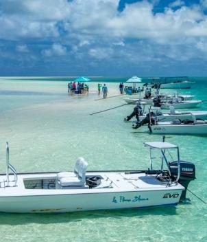 Alphonse Island Resort