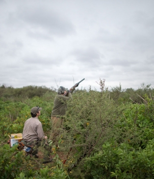 Shot diversity is the signature of Cordoba Lodge dove shooting in Argentina