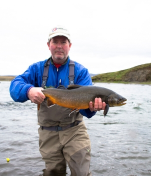 Iceland Trout
