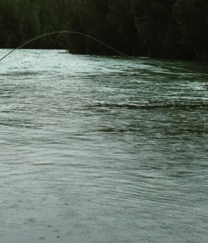Alaska Clearwater Sportfishing