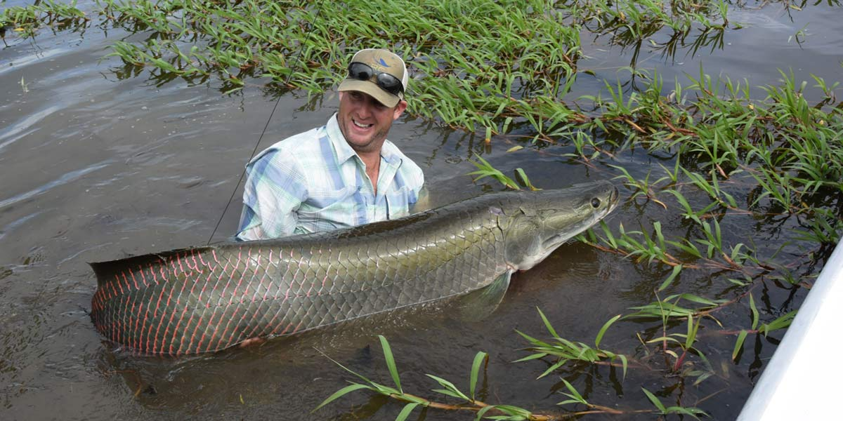 Pirarucu lodge fly fishing frontiers travel for Colorado fishing lodges
