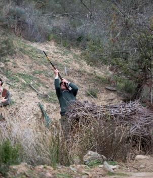 Ventosilla - Partridge Shooting