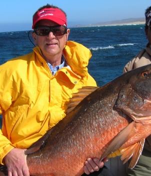 Los Cabos - Southern Baja Peninsula