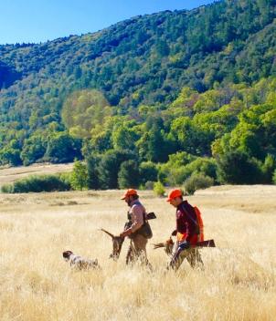 V1 Ranch