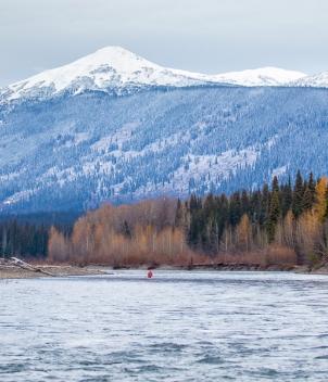Salmon and Steelhead of BC Advisory Service