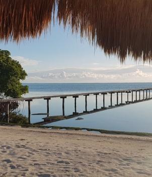 The Xflats at Tierra Maya