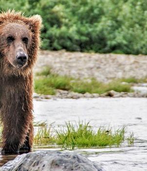 Alaska Rainbow Adventures
