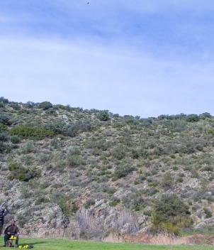La Cuesta - Partridge Shooting