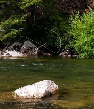 Martin Pescador Lodge