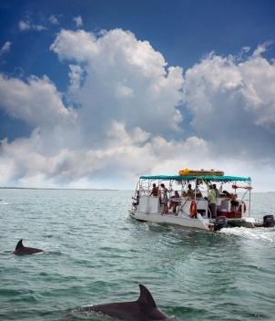 Belcampo Belize